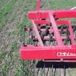 Strigling af vårbyg - det ser lidt voldsom ud, men kornet vil rette sig op igen